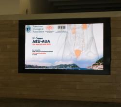Ier Curso AEU-AUA. Donostia Nov 16